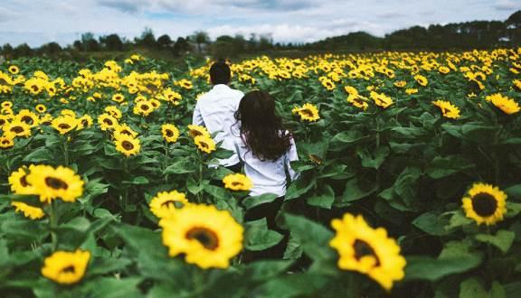 thong tin cac vuon hoa dep o da lat - dulichso.vn - Dichvuhay.vn