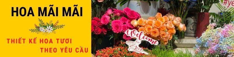 Top 7 Shop Hoa Lan Hồ Điệp Hà Nội - dulichso.vn - Dichvuhay.vn