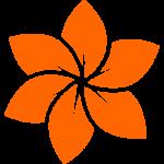 du-lich-kham-pha-24h-icon - Baotrithuc.vn